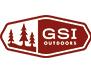 Логотип GSI