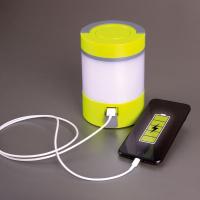 Купить онлайн Светодиодная лампа с убийцей насекомых